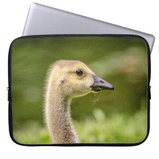 Canadian Goose (Gosling) Laptop Sleeve