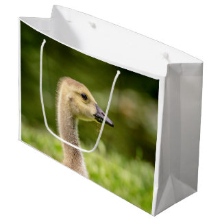 Canadian Goose (Gosling) Large Gift Bag