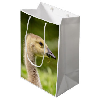 Canadian Goose (Gosling) Medium Gift Bag