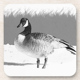 Canadian Goose in the snow Beverage Coasters