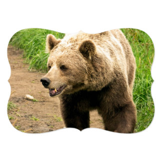 """Canadian Grizzly 5"""" X 7"""" Invitation Card"""