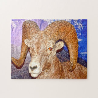Canadian long horn sheep. puzzle