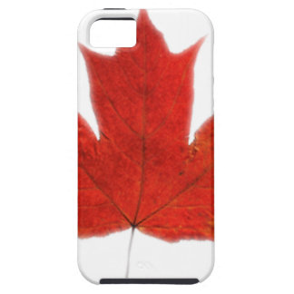 Canadian... Maple leaf Case For The iPhone 5