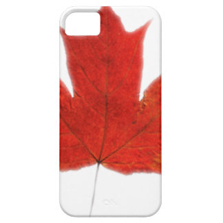 Canadian... Maple leaf Case For iPhone 5/5S