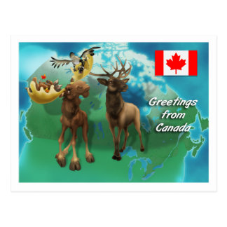 Canadian Moose Elk Beaver and Goose Postcard