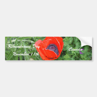 Canadian Remembrance Day November+11th Poppy Bumper Sticker