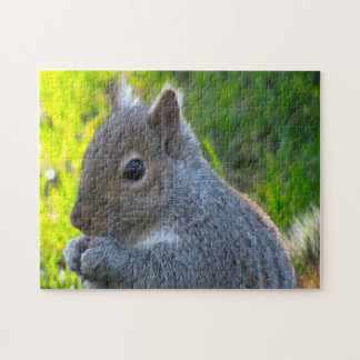 Canadian Squirrels Jigsaw Puzzle