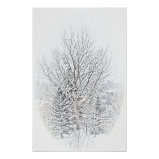 Canadian Winter Poster