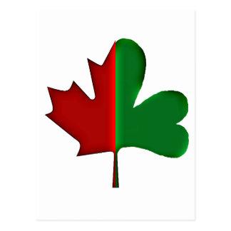 Canadien irlandais cartes postales