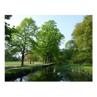 Canal - Bute Park, Cardiff Postcard