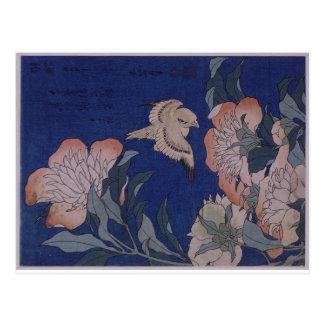 Canary and Peony by Katsushika Hokusai Postcard