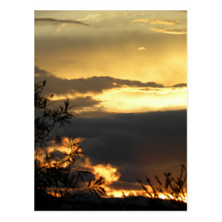 Canberra Summer Sunset Postcard