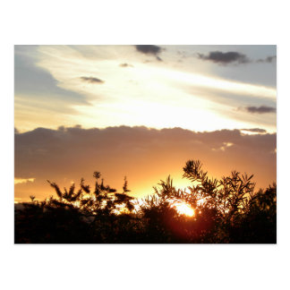 Canberra Sunset Postcard