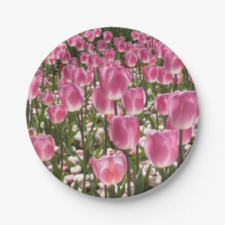 Canberra Tulips 7 Inch Paper Plate