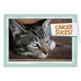 Cancer Sucks, Sad Cat Card