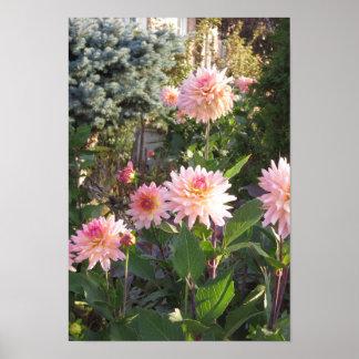 Candian wild garden parks flowers yellow pink rose print