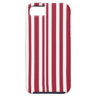 Candy-Cane #11 Case For The iPhone 5