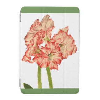 Candy Cane Lilies on iPad Cover