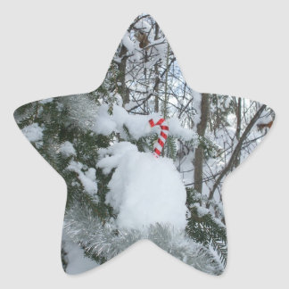 Candy Cane Outdoor Decoration Star Sticker