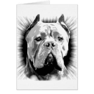 Cane Corso Dog Card