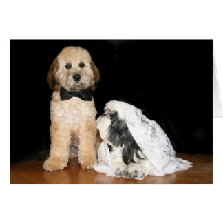 Canine bride and groom card
