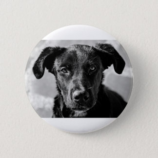 Canine Dog Pet 2 Inch Round Button