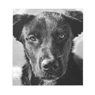 Canine Dog Pet Notepad