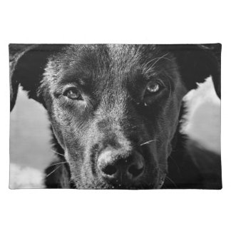 Canine Dog Pet Placemat