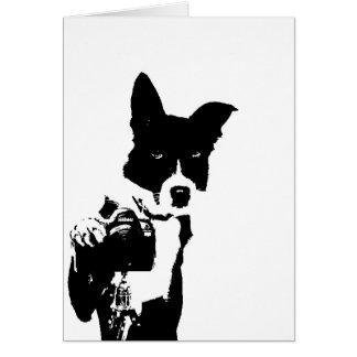 Canine Photographer Card