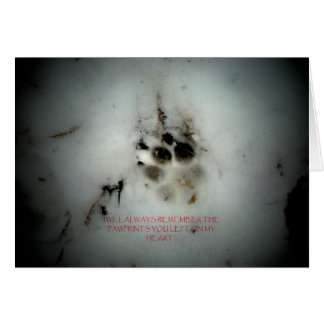 Canine Sympathy Condolance Card