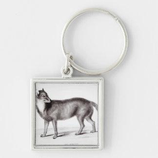 Canis Antarcticus Keychain