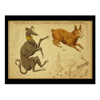 Canis Major, Lepus, Columba Noachi Cela Sculptoris Postcard