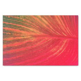 Canna Leaf Pink Tinge Tissue Paper