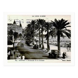 Cannes, France, Promenade de la Croisette Vintage Postcard