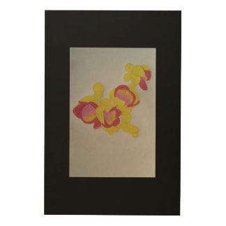 Cannon ball flower wood canvases