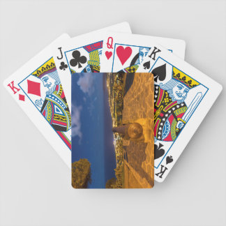Cannon Poker Deck
