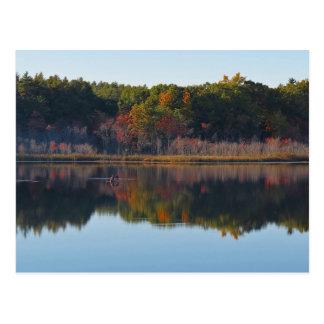 Canoe Calm - Whitney Pond Postcard