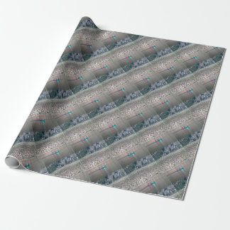 Canoe the Similkameen River in BC, Canada Wrapping Paper
