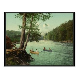 Canoeing on an Adirondack Mountain Stream Postcard