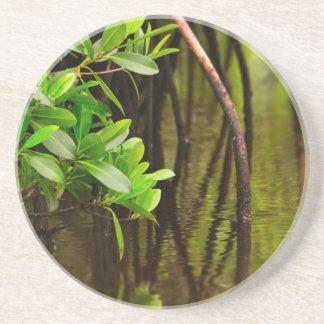 Canoeing Through Quiet Mangroves Coaster