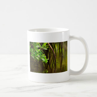 Canoeing Through Quiet Mangroves Coffee Mug