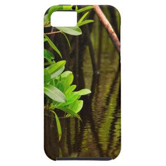 Canoeing Through Quiet Mangroves iPhone 5 Case