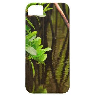 Canoeing Through Quiet Mangroves iPhone 5 Covers