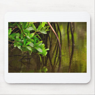 Canoeing Through Quiet Mangroves Mouse Pad