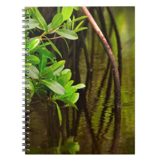 Canoeing Through Quiet Mangroves Notebook