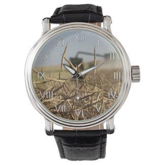 Canola Grain Harvest Combine Watch