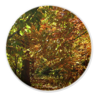 Canopy of Fall Leaves II Yellow Autumn Photography Ceramic Knob