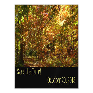 Canopy of Fall Leaves Save the Date Magnetic Card