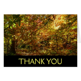 Canopy of Fall Leaves Thank You Card (Blank Inside