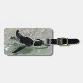 Can't Get Mad at Looking at a Penguin! Luggage Tag